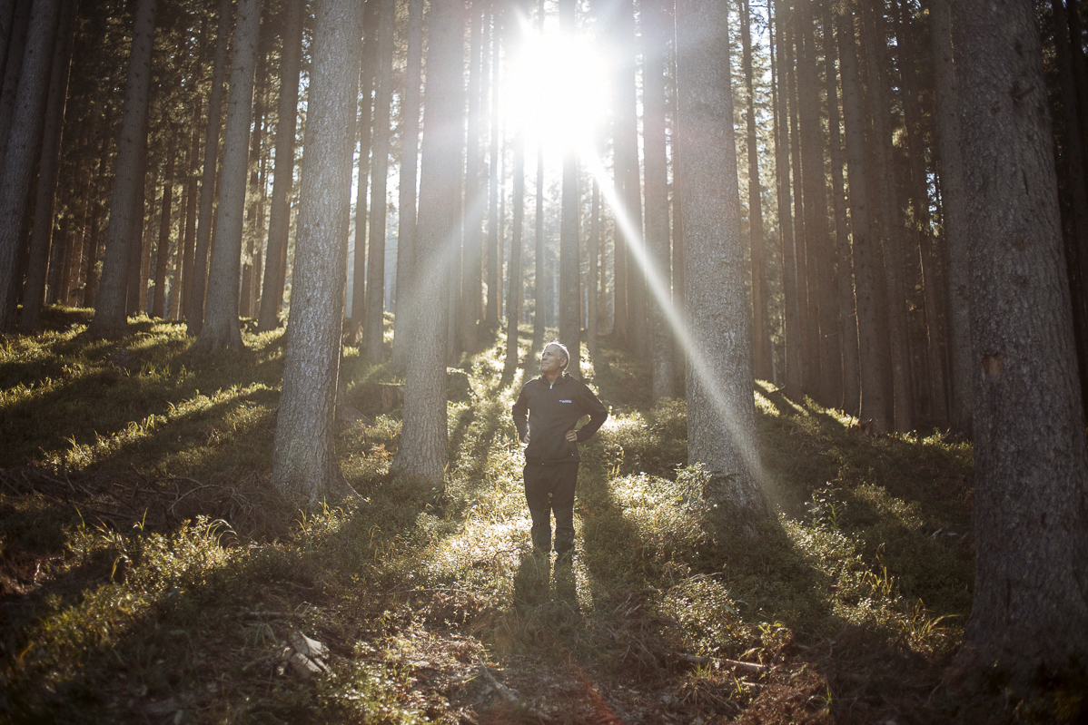 In The Italian Alps, Stradivari's Trees Live On