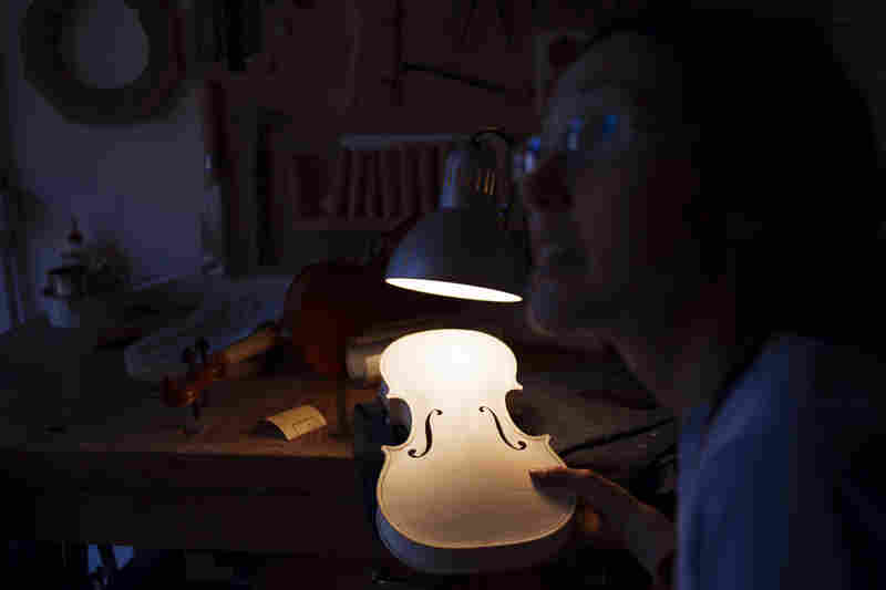Luthier Cecilia Piazzi crafts a violin in her Northern Italian workshop. It takes months to complete a single instrument that can cost more than $10,000. A Stradivarius including wood from the same forest can go for more than $10 million.