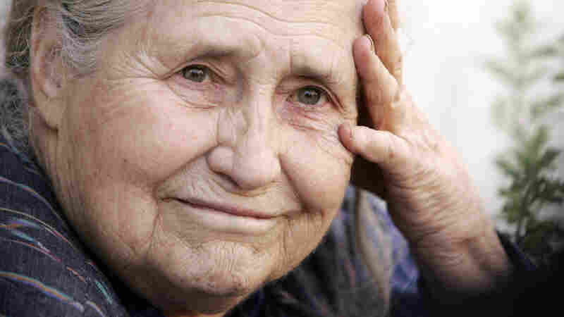 Book News: Doris Lessing's Personal Library Returns Home — To Zimbabwe
