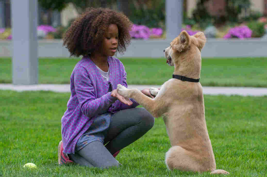 Quvenzhané Wallis, who was nominated for an Oscar for her role in Beasts of the Southern Wild, plays little orphan Annie in the new film adaptation of the 1977 musical.