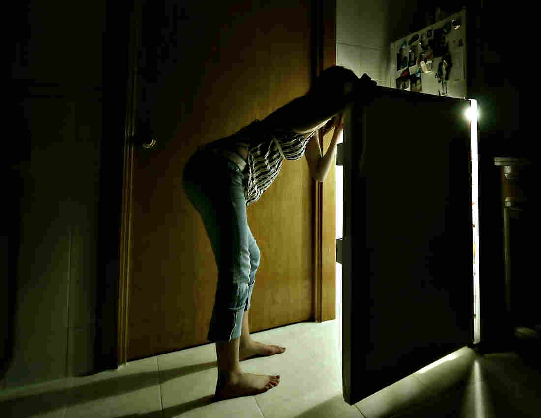 Do you wonder if the refrigerator light goes off when you shut the door?