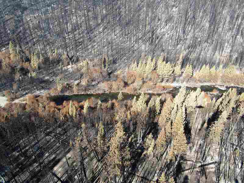 The Rubicon River flows through the King Fire burn area. Steep slopes and burned ground make the area mudslide-prone.