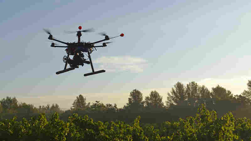 "An unmanned aerial vehicle films vineyards in France. Drones like this one are also being used in Califiornia, as part of a broader ""precision farming"" movement designed to lower greenhouse gas emissions."
