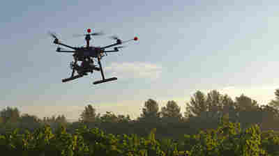 "An unmanned aerial vehicle films vineyards in France. Drones like this one are also being used in Califiornia,as part of a broader ""precision farming"" movement designed to low"