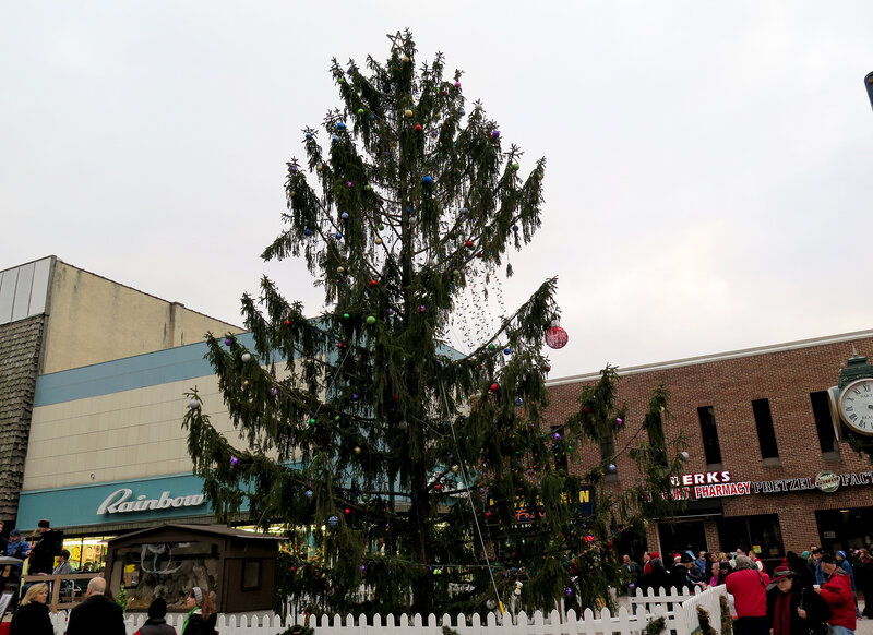 Ugly Christmas Tree.It Just Needed A Little Love An Ugly Spruce Ties A Town