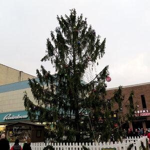 around the nation - Tall Christmas Tree