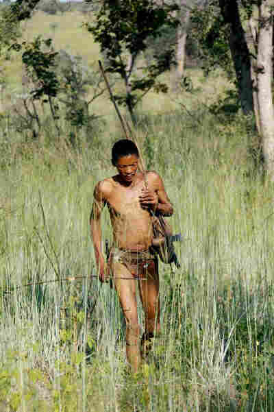 The Bushmen know which plants and herbs are good to eat — and which will heal their ailments.