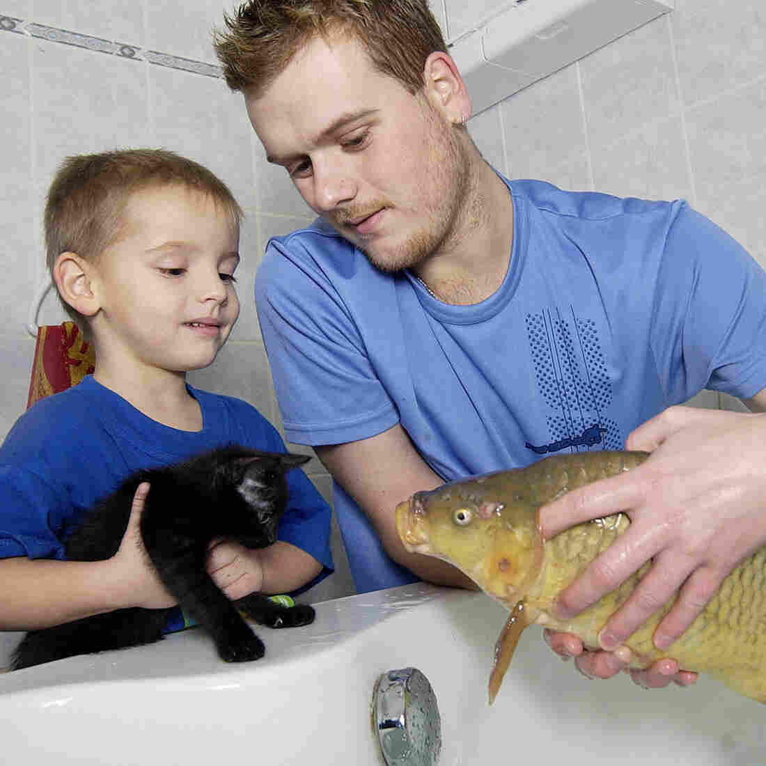 Lukas Hutta of Ostrov, Czech Republic, and his son Lukas check on the carp that they're keeping in the family bathtub before Christmas in this photo from 2004.