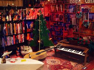 HMSTR performs the teeniest holiday Tiny Desk Concert.