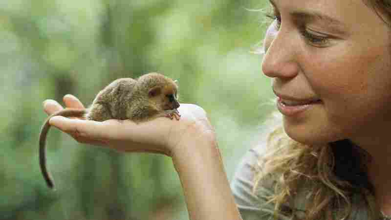 """During a wildlife survey in Madagascar, Mayor discovered a new species of mouse lemur. """"[It] weighs less than two ounces, fits in the palm of your hands,"""" she says."""