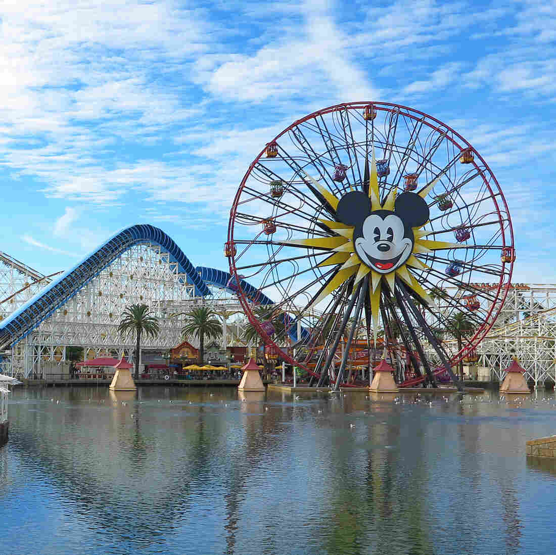 Measles Makes An Unwelcome Visit To Disneyland