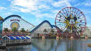 Measles Makes An Unwelcome Visit To Disneyland