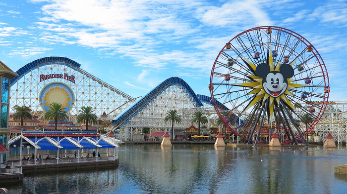 health official speculate that an internationl visitor to Disneyland California Adventure Park and Disneyland must have spread measles there