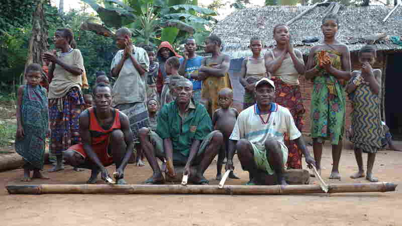 Men play a struck beau while women and children sing behind them at an Mbenzele Pygymy village.