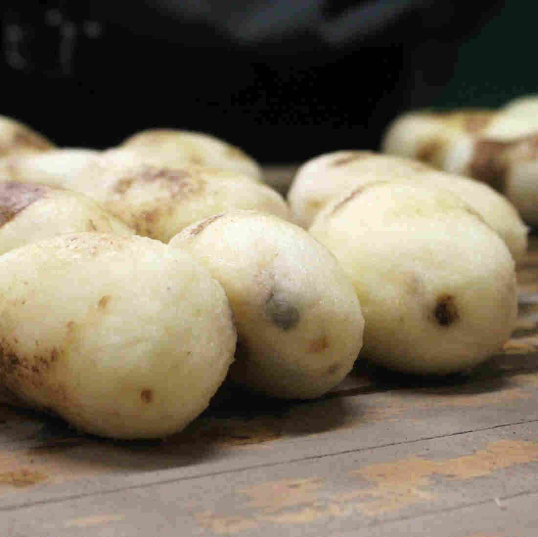 GMO Potatoes Have Arrived. But Will Anyone Buy Them?