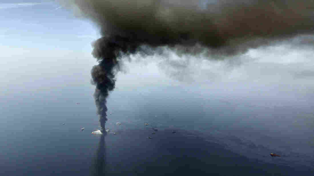 """Cruden ranks the Gulf oil spill as one of the most significant environmental disasters of our time. It """"deserves ... all of our energy to make sure nothing like this ever happens again,"""" he says."""
