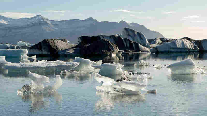 Icebergs float in Iceland's Jökulsárlón glacial lake, where the Vatnajökull glacier is retreating quickly due to global warming.