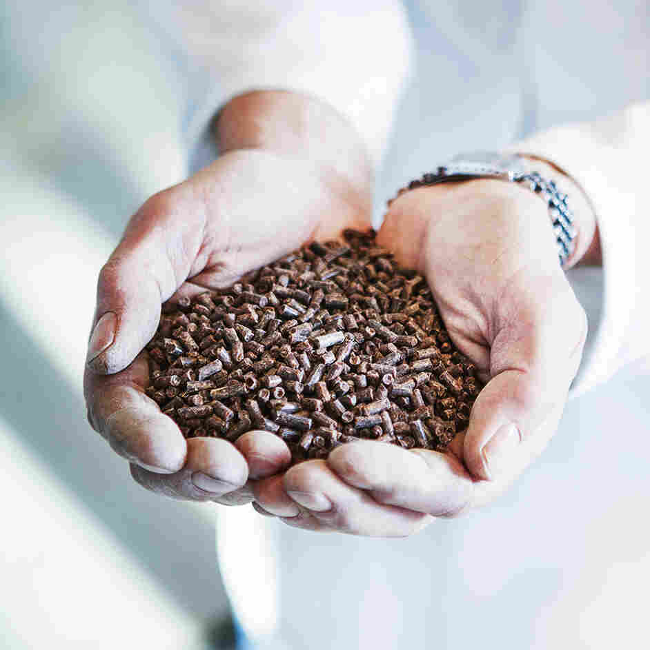 Aqua-Spark, a new sustainable aquaculture fund, has invested in Calysta's Microbial Protein Feed, an alternative to conventional fishmeal.