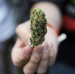 Pediatricians Say Don't Lock Up Teenagers For Using Marijuana