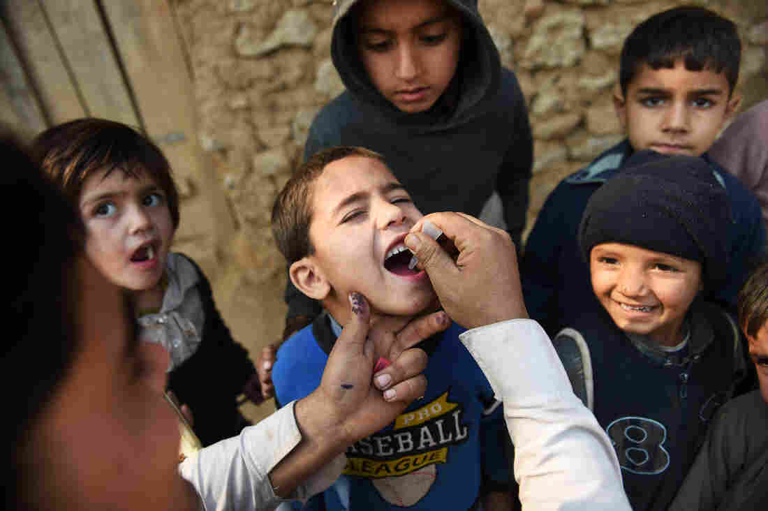 A Pakistani polio vaccination worker gives a dose to a child in Islamabad during a 2014 campaign.