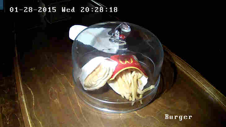 """An exhibit called """"The last McDonald's hamburger in Iceland"""" now has a webcam devoted to it. The burger was purchased in 2009."""
