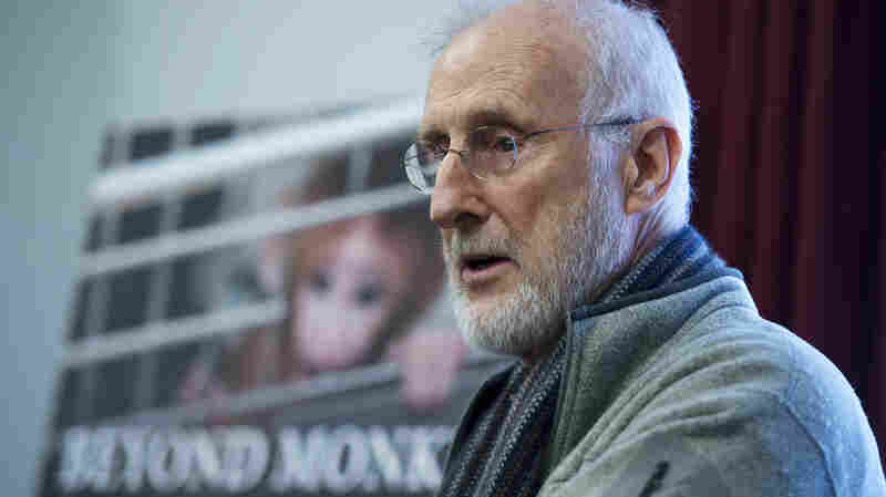 Actor-activist James Cromwell testified Tuesday on Capitol Hill about the use of infant rhesus monkeys at an NIH lab.