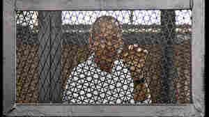Egypt Frees 1 Of 3 Jailed Al Jazeera Journalists