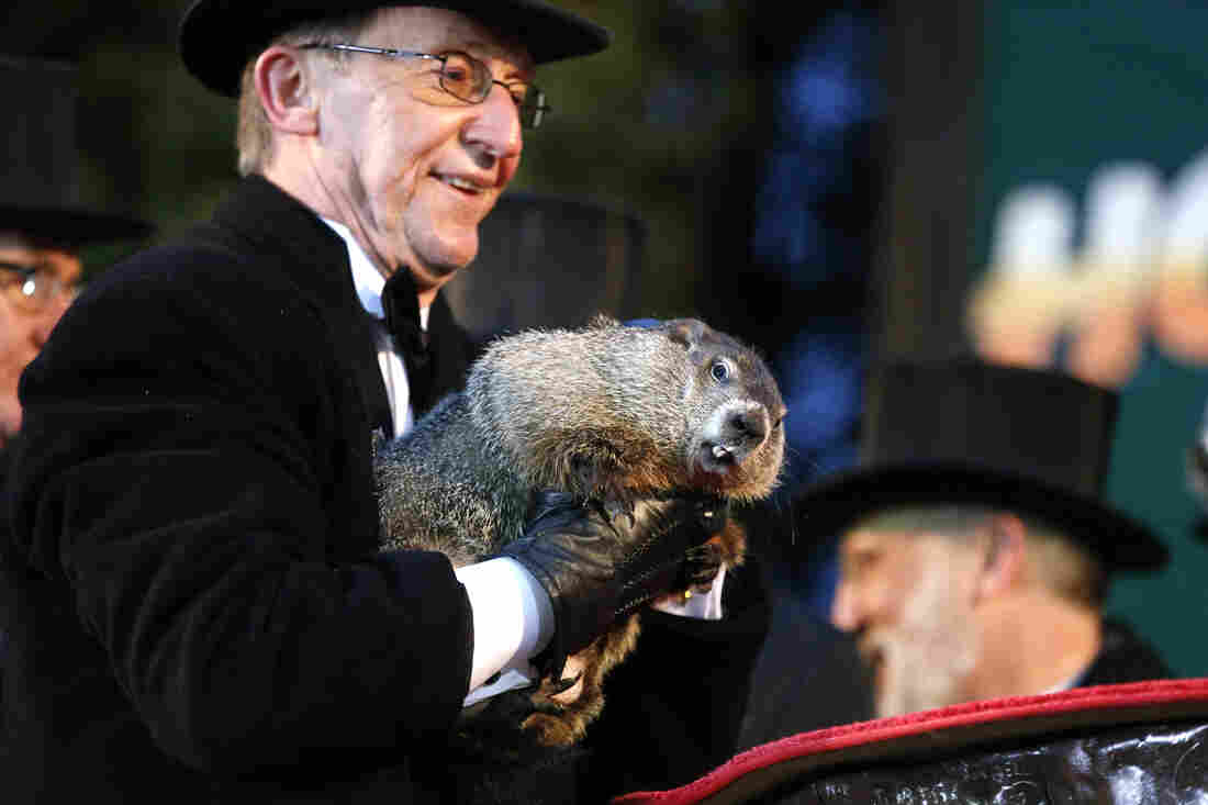 Groundhog Club handler Ron Ploucha holds Punxsutawney Phil, the weather prognosticating groundhog, during the 129th celebration of Groundhog Day on Gobbler's Knob in Punxsutawney, Pa., on  Monday. Phil saw his shadow, predicting six more weeks of winter weather.