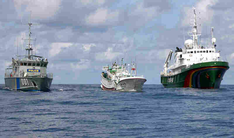 A Palauan law enforcement vessel (left) escorts a Taiwanese longline fishing vessel (center) and a Greenpeace ship (right) at sea in the exclusive economic zone of Palau in 2011. The Taiwanese ship was suspected of illegal shark-finning in the area.