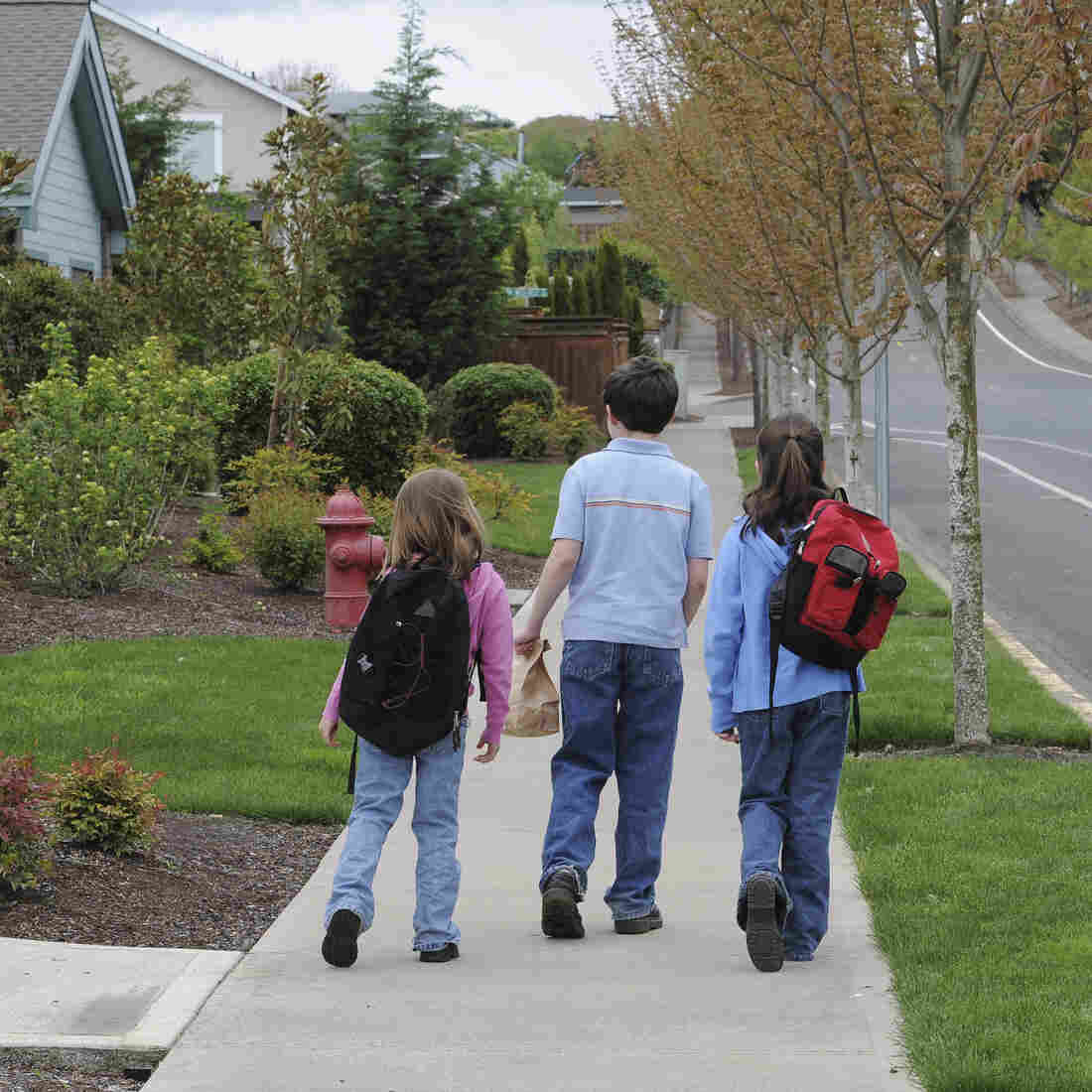 Kids' Solo Playtime Unleashes 'Free-Range' Parenting Debate