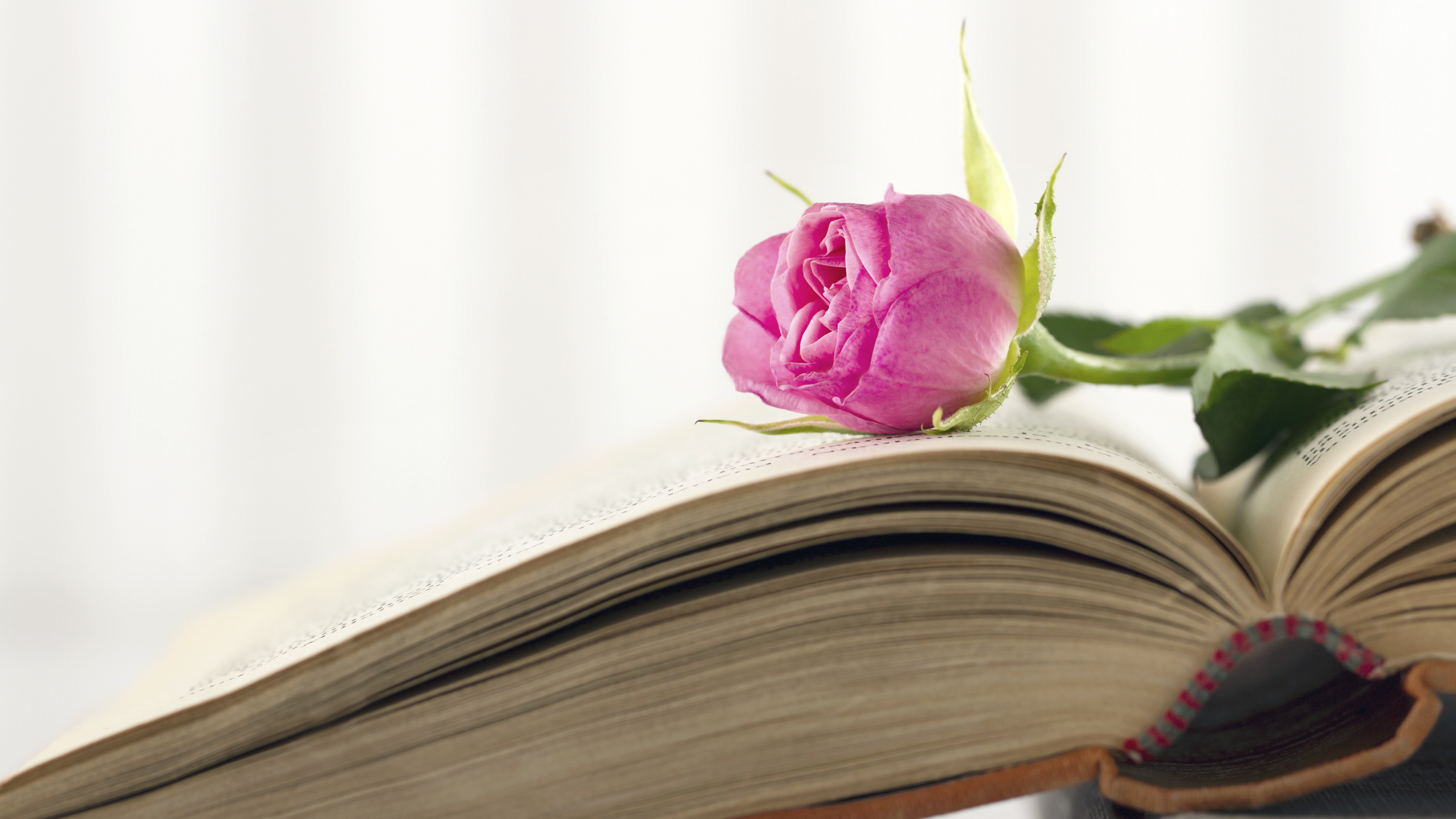 Three Books To Light Your Fire For Valentine's Day