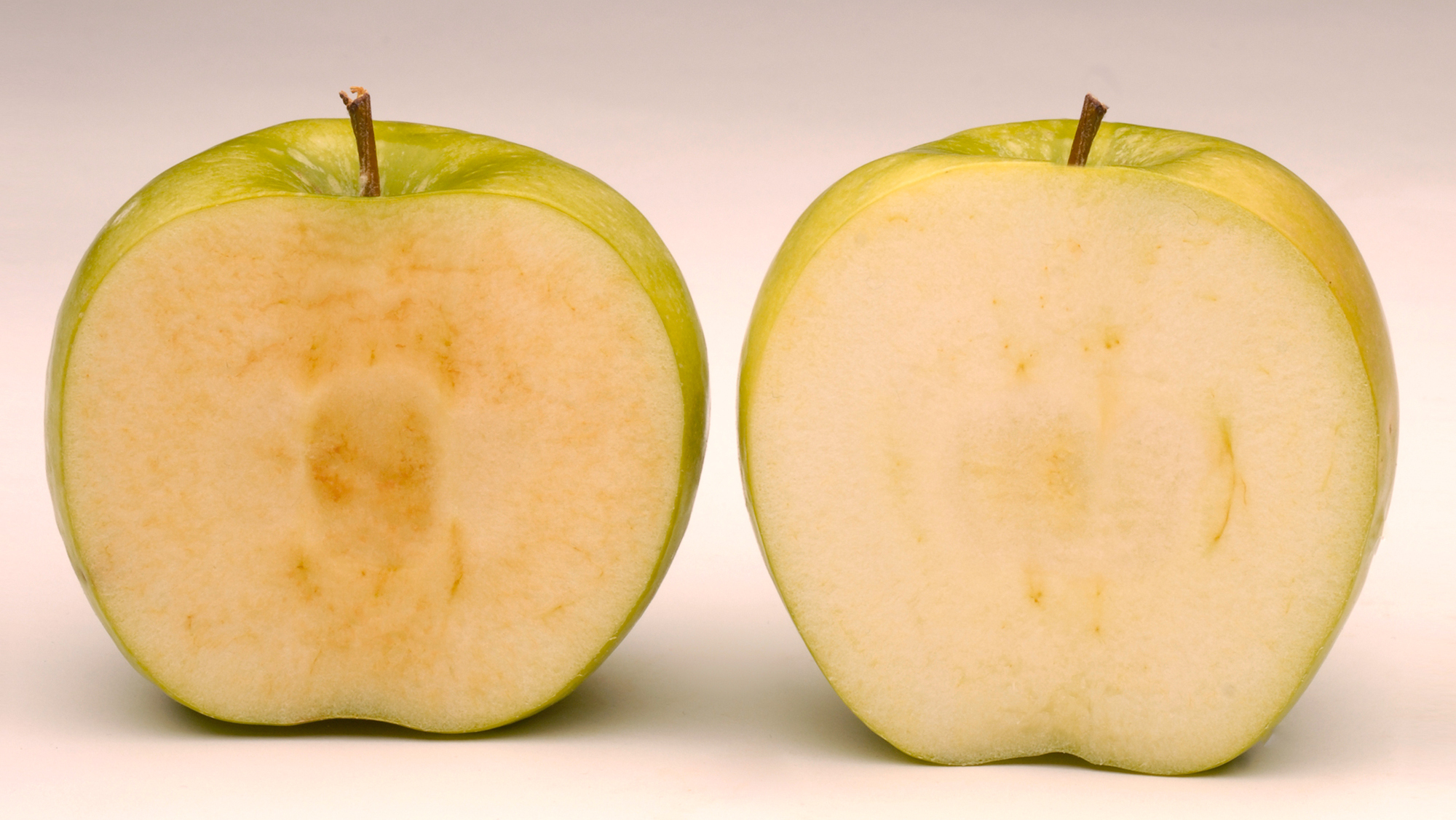 GMO Apples Get The Nod, But Not Much Of A Welcoming Party