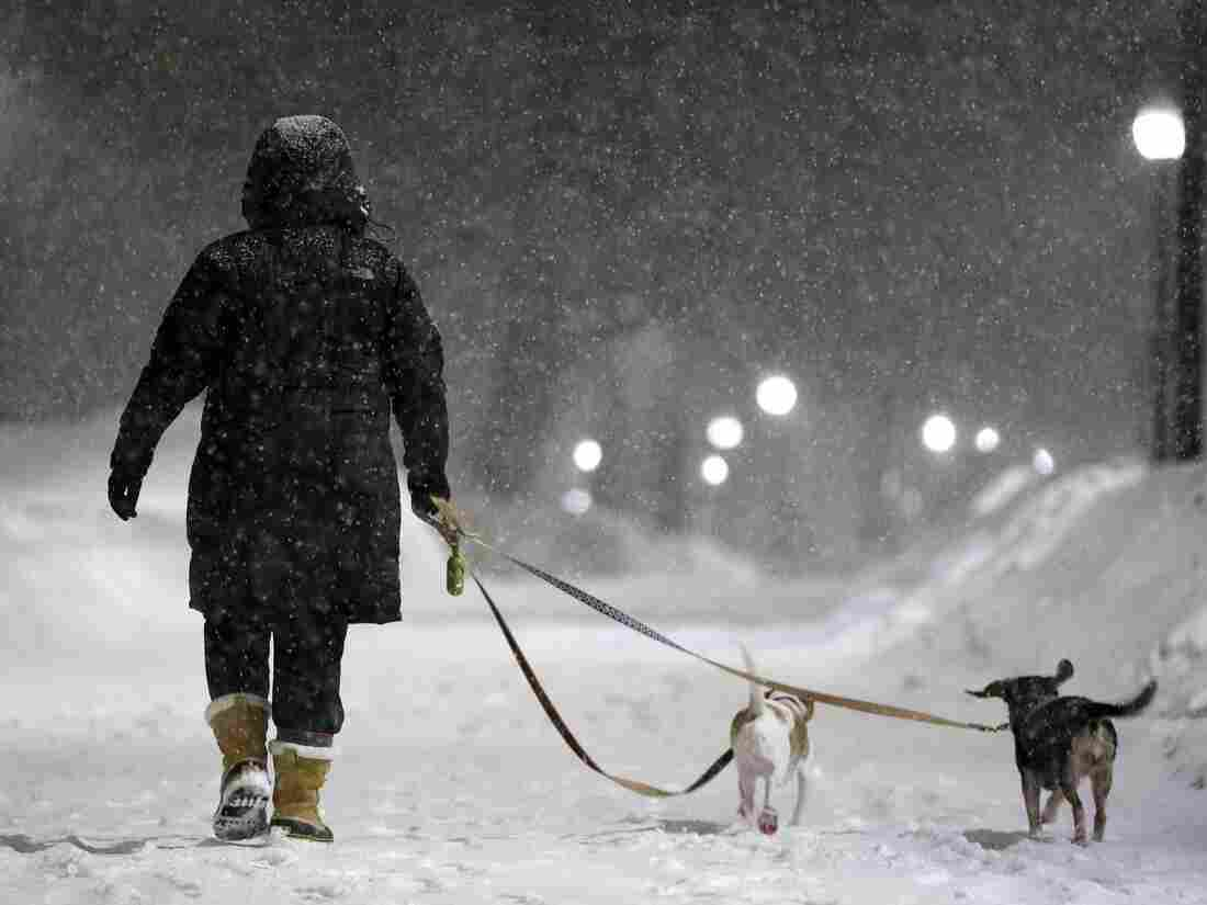A woman walks with two dogs as snow falls on Boston Common in Boston, on Saturday.