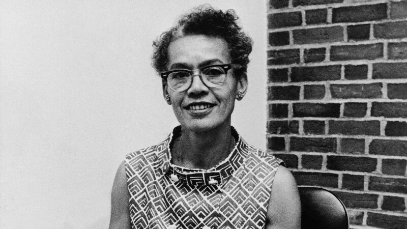 Image result for pauli murray