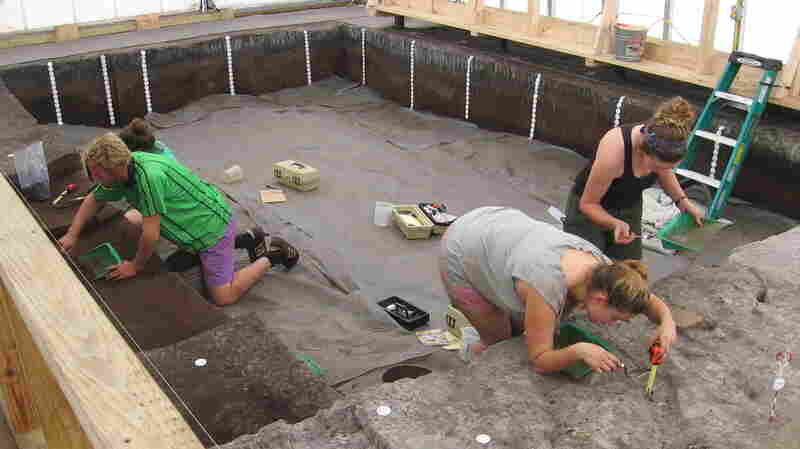 Students Patrick Rohrer, Sarah Warthen, Alix Piven and Lauren Urane are led by Mercyhurst University Archeologist Andy Hemmings. Their project has picked up where Florida's State Geologist Elias Sellards left off in 1915. Sellards led an excavation of the site where workers digging a drainage canal found fossilized human remains.