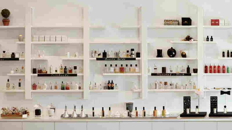 Scent Bar, in central Los Angeles, is home to over 700 niche fragrances — several of which are neatly arranged here.