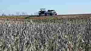 Army Corps Project Pits Farmland Against Flood Threat