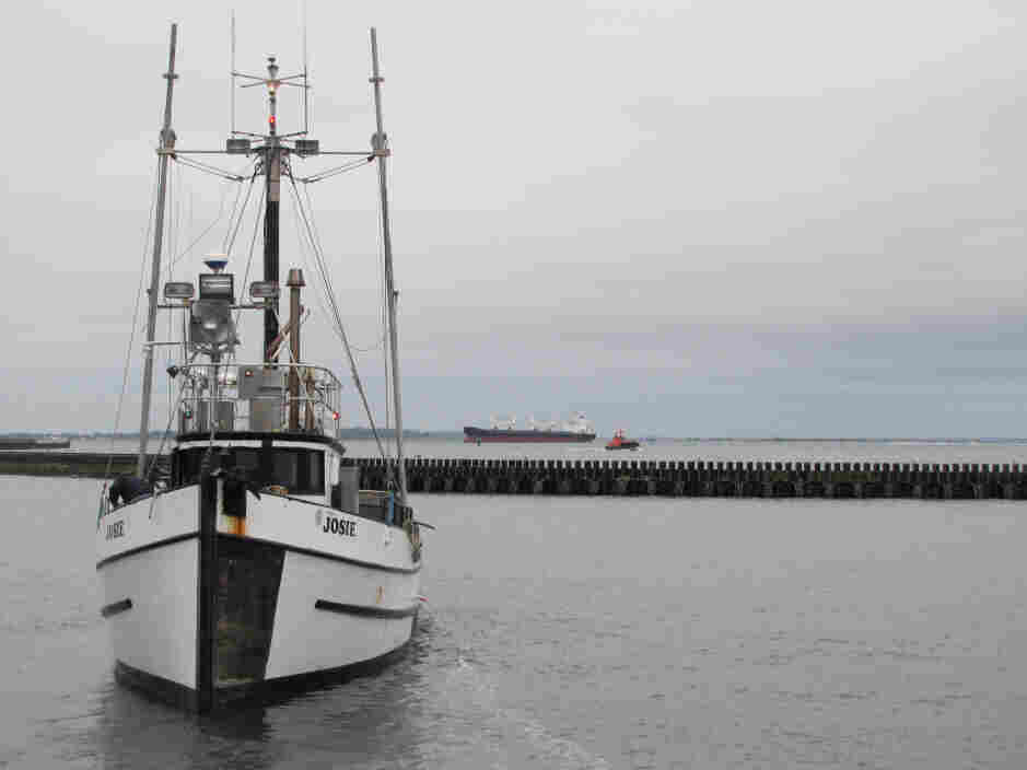 A Quinault Indian Nation fishing boat comes in to unload its catch in Grays Harbor at a point not far from the proposed locations of three oil train-to-ship facilities in Washington state.