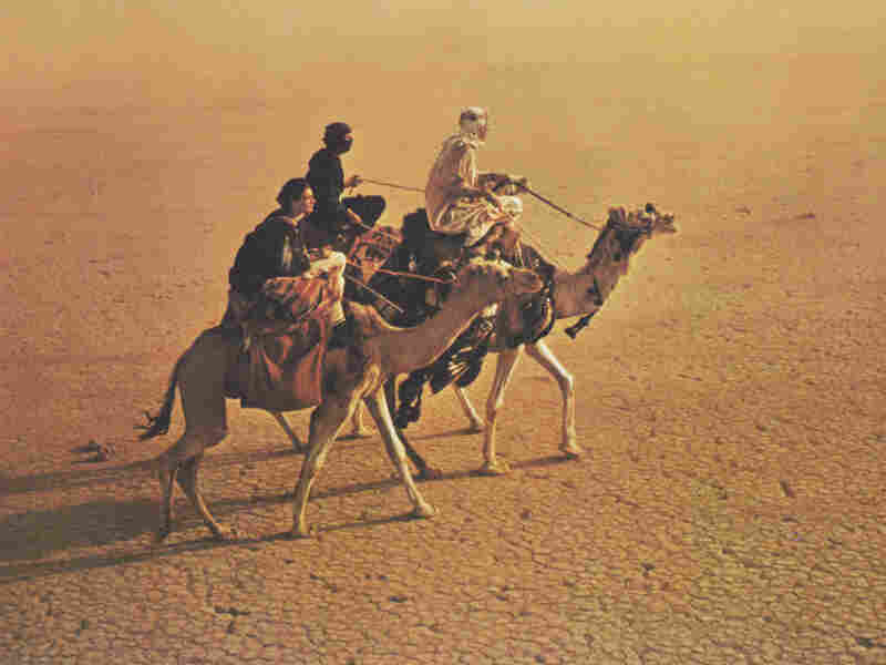 The sweeping, searing desert vistas in Lawrence of Arabia will make you feel many things — cold not among them.