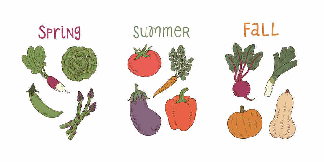 The temporary tattoos from Tater Tats come in three different seasonal packs.