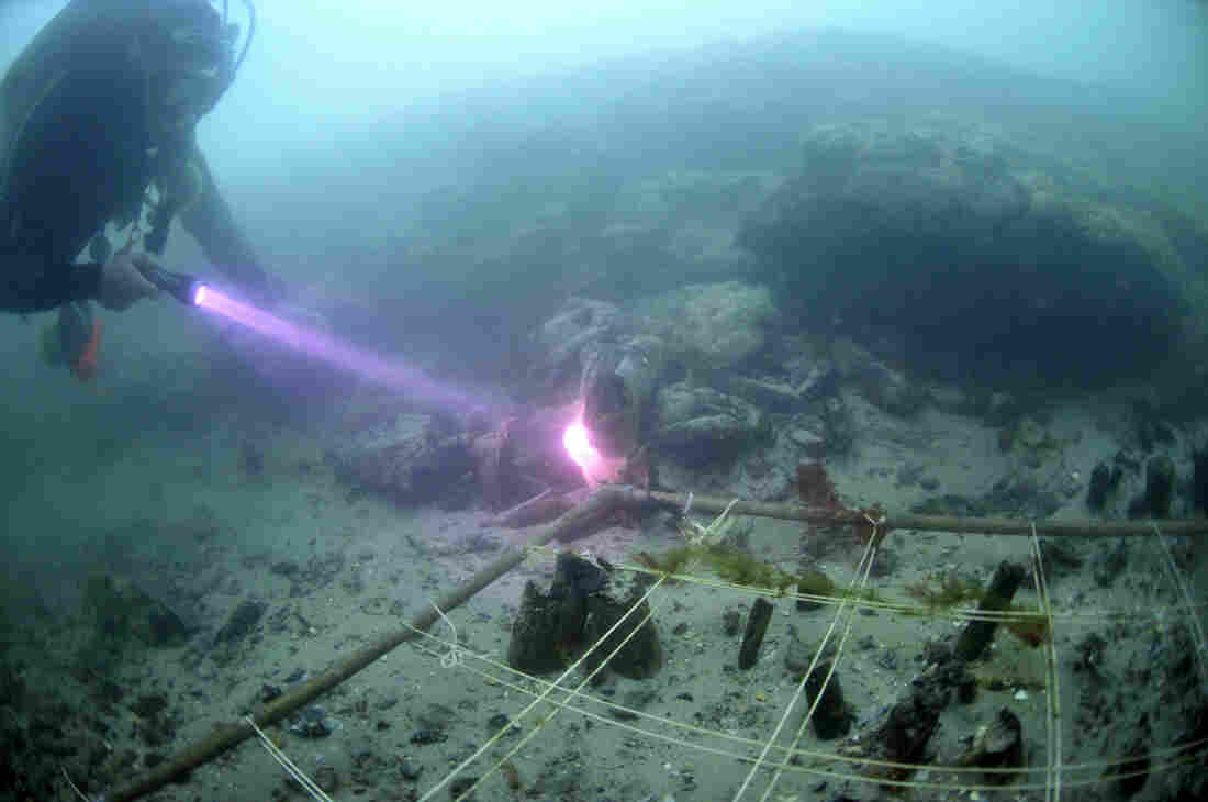 Divers recover items from Bouldnor Cliff, a submerged prehistoric settlement site off the coast of the Isle of Wight, U.K. Along with lunchtime paraphernalia, divers also found ancient DNA from cultivated wheat.