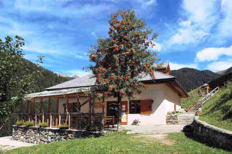 """Francesco Lenzi's homestead in a region in the Italian Alps called Trentino. Lenzi, a cheese-maker and farmer, raises cows that can be """"adopted"""" by locals or visitors through the Adopt A Cow Program."""