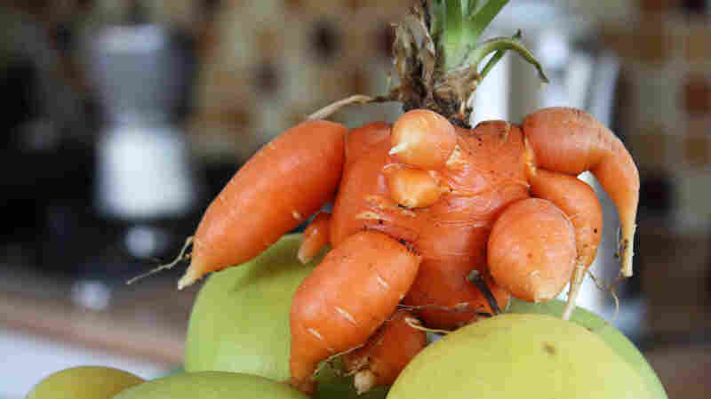 "Mutant carrot?! Not really ... these extra ""limbs"" sprout for perfectly normal reasons, as we explain below."