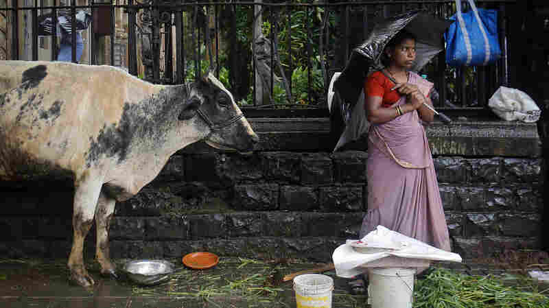 A streetside vendor stands on the pavement next to her cow as it rains in Mumbai, India.