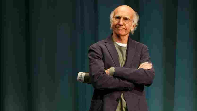 Larry David also co-created the NBC series Seinfeld. That show's character George Costanza is loosely based on David.