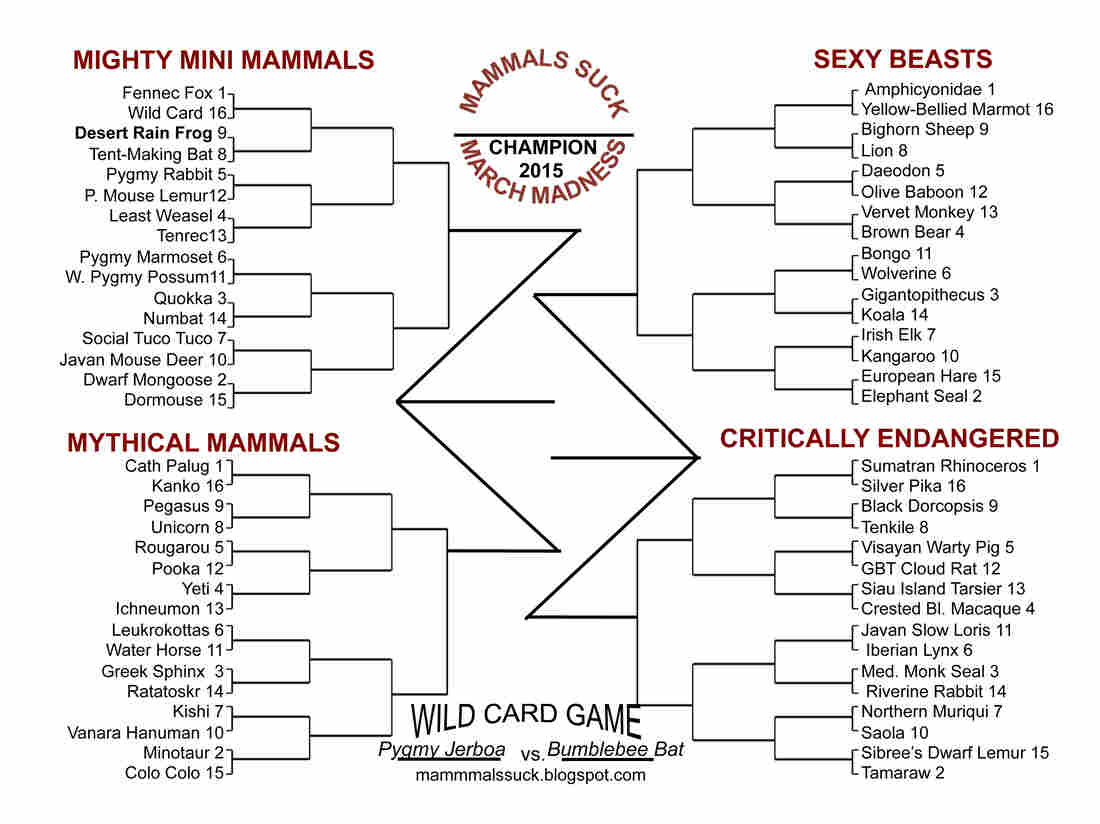This year's tournament features divisions with pygmy animals; mammals shaped by sexual selection; creatures from human folklore; and mammals from the International Union for the Conservation of Nature's list of threatened species. Download this bracket, fill it out and follow your picks through the tournament. (We're rooting for the wolverine.)