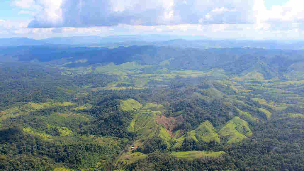 Explorers Discover Ancient Lost City In Honduran Jungle