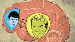 The Teenage Brain: Spock Vs. Captain Kirk
