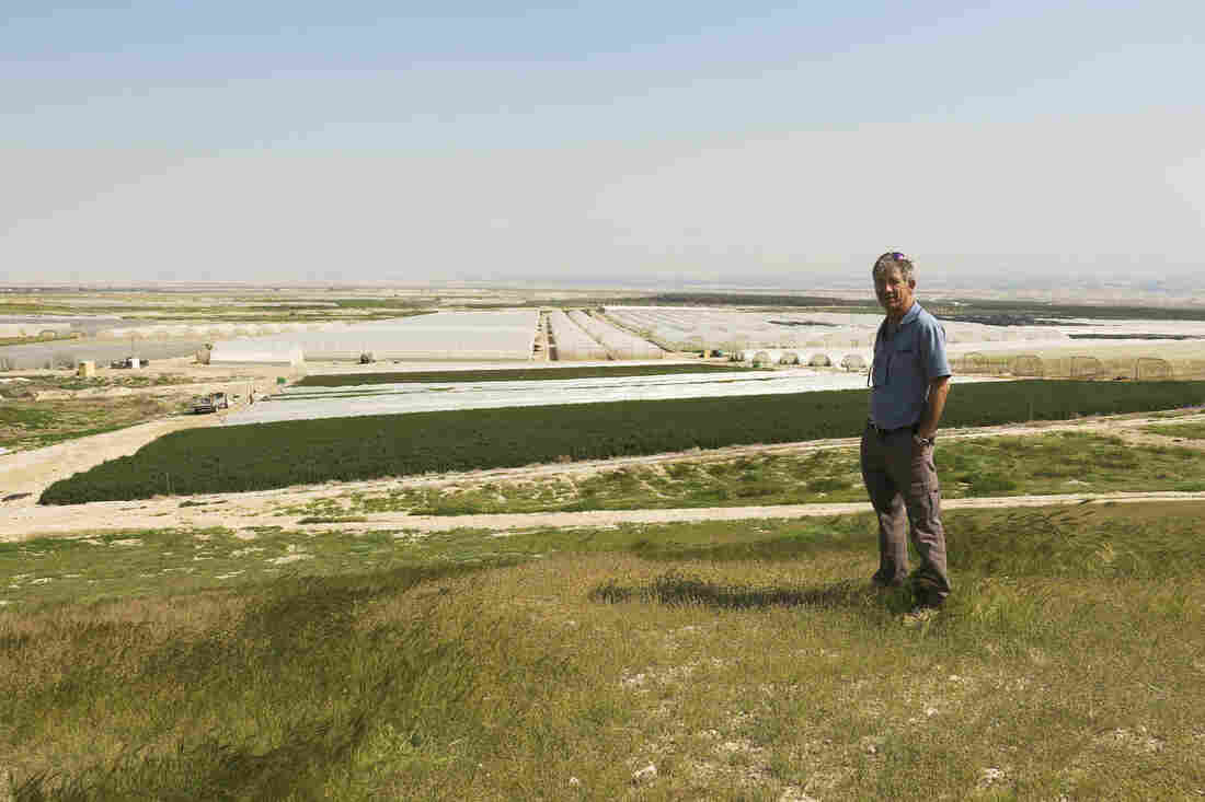 Israeli Inon Rosenblum raises herbs for export on Moshav Na'ama, an agriculture settlement in the Jordan Valley. Israel says control of this part of the West Bank is crucial for its security. Rosenblum receives scarce water, which is controlled by Israel, and employs Palestinians for field and packing work.