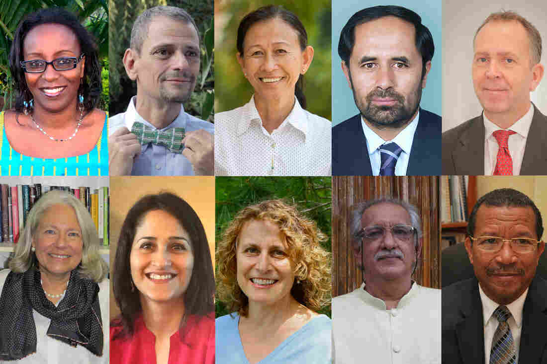 The 10 finalists for this year's Global Teacher Prize (clockwise from top left): Jacque Kahura, Stephen Ritz, Phalla Neang, Azizullah Royesh, Richard Spencer, Guy Etienne, Madenjit Singh, Naomi Volain, Kiran Bir Sethi and Nancie Atwell.